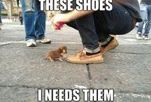 Shoes! / Pure Shoes
