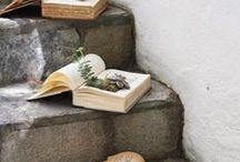 book succulents