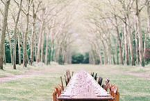 If I ever had a wedding or one I would love to photograph / by Amber Watson