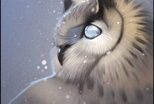 OWL~¤~