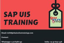 https://www.globalonlinetrainings.com/sap-ui5-training