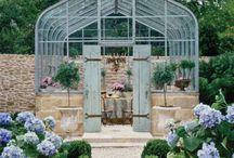 Outdoor & Gardens / by Terri Ring
