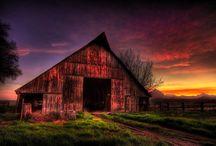 Barns / by Gwen Hafford