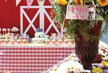 Farm birthday.