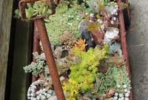 Fairy Garden / by Ruthi