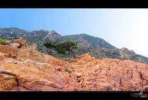 Paesaggi Sardegna