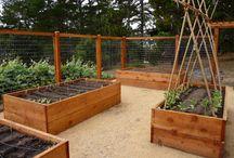 Zahradní inspirace
