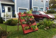Groverator favs / Container pallet gardening