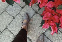 Aesthetic Roses / Beautiful and aesthetic tumblr roses!