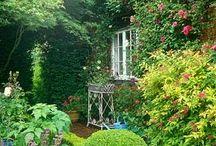 Cottage Garden / #cottage #garden #perennials #borders #English #informal garden #flowers / by Alicia Stavropoulos
