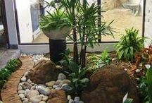ogród zimomwy- taras