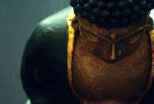 Buddha Diaries