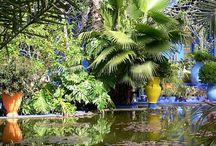 Marrakech / Zin in een stedentrip Marrakech? Deze stad is echt betoverend en zet alle zintuigen op scherp. Op dit board vind je alle tips die je nodig hebt voor een stedentrip Marrakech. http://mooistestedentrips.nl/marrakech