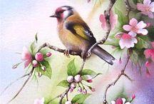 Kuşlar1