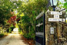 A Quinta da Florência / Turismo na Serra da Estrela, Portugal. Venha se hospedar conosco e desfrute de momentos maravilhosos!  Tourism in Serra da Estrela, Portugal. Come stay with us and enjoy wonderful moments!