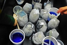 Science - Preschool Classroom Creations / by Tracy Burns