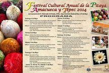 FestivaldelaPitaya2014