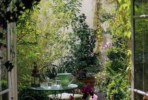 court/garden