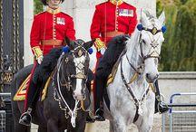 london guard