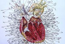 Anatomy Geek / by Jennifer Lucas