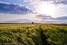 Nasze rejony / Piękno Lubelszczyzny - zachwycające widoki z jednego z najpiękniejszych regionów Polski!