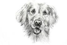Pets, Tina Steele Lindsey / Tina Steele Lindsey, Pets, Portraits, Dogs, Dog Portraits
