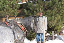 Ausfahrt des Pferdezuchtverbandes / Ausfahrt des Pferdezuchtverbandes bei sonnigem Wetter durch Lungötz