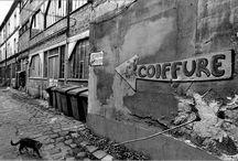 ta gueule !!! / La France / by Tito Chain