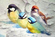 Fugler Birds Oiseaux