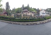 Theme Park Photos