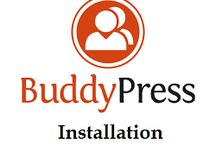 Buddypress installation services