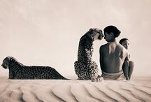 Fantastic - Leopar Jaguar