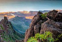 Tenerife / Conseils, bons plans et bonnes adresses pour organiser votre road trip dans les îles Canaries à Tenerife