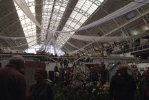 Country Living Spring Fair 2014 / Thinking of Spring 2015.....