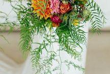 Wedding of Melissa & Matt