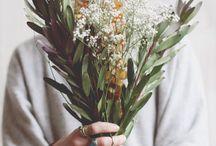 ~ Bouquet ~