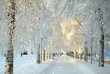 Paris Winter wonderland