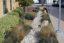 Water sensitive urban design