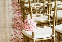 Rose Petal Ideas / Romantic ideas for using rose petals.