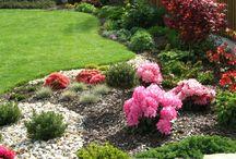 Zahradní desing