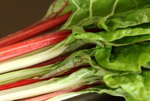 Greens Recipes (Chard, Collards, Kale, and more!)