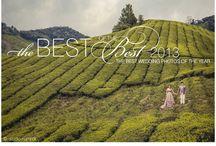 Top Wedding Photos 2013 / by Junebug Weddings