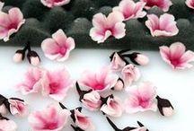 cseresznye virág