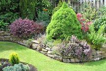 Garden Borders / Edging