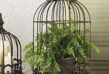 birdcage ideas