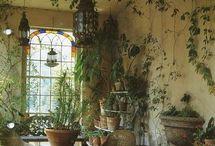 planten huiskamer