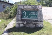 Parco Nazionale dell'Abruzzo / Alcune foto in Val Fondillo