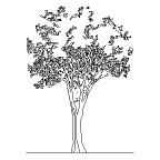 Landscaping Brushes