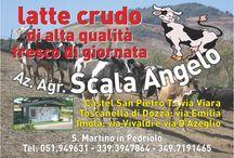 Agricola Scala / Azienda Agricola Scala Angelo - Via Padella, 2/a - 40020 San Martino in Pedriolo (BO)