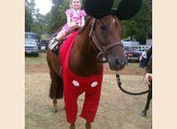 pony club fancy dress